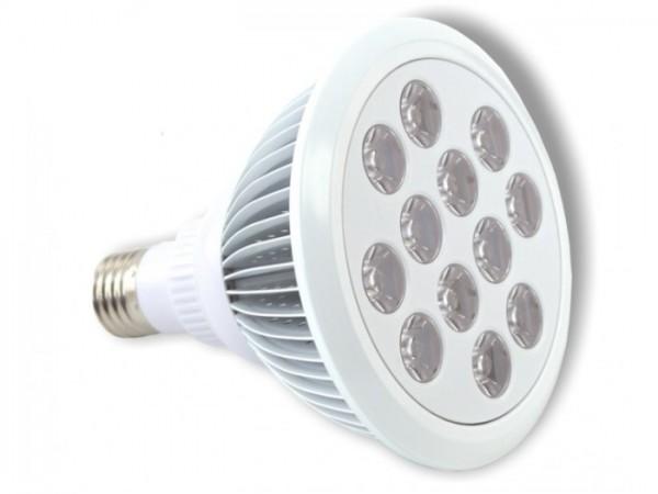 LED Leuchtmittel PAR38 12x2W 3000K 30° E27 1550lm/m
